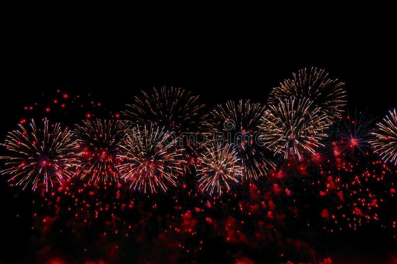 在黑背景的烟花庆祝设计的 抽象红色烟花显示背景 免版税库存照片