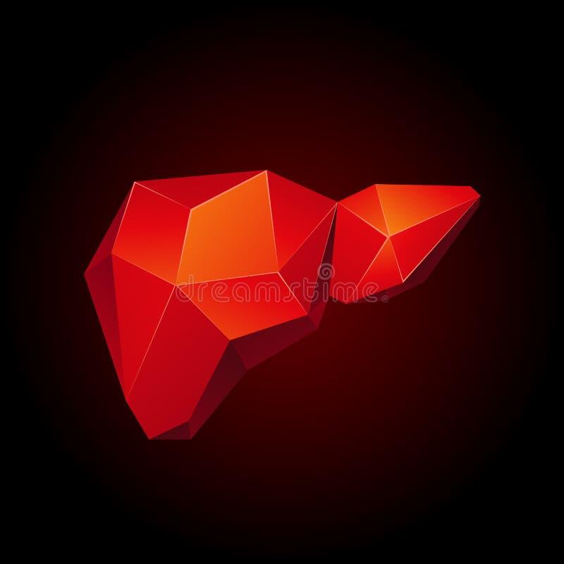 在黑背景的红色低多人的肝脏 抽象解剖学器官 肝脏3D多角形样式 向量例证
