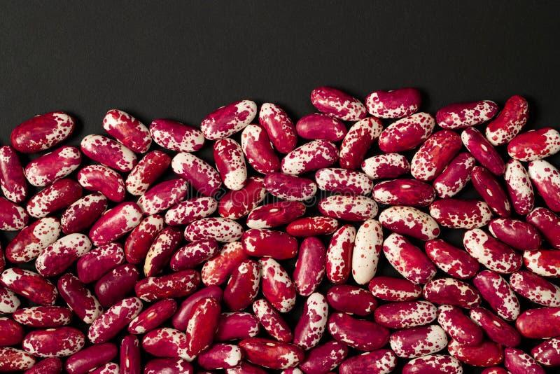 红色有斑点的扁豆 库存图片