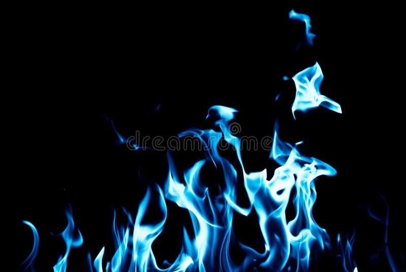 在黑背景的蓝焰火 免版税库存图片