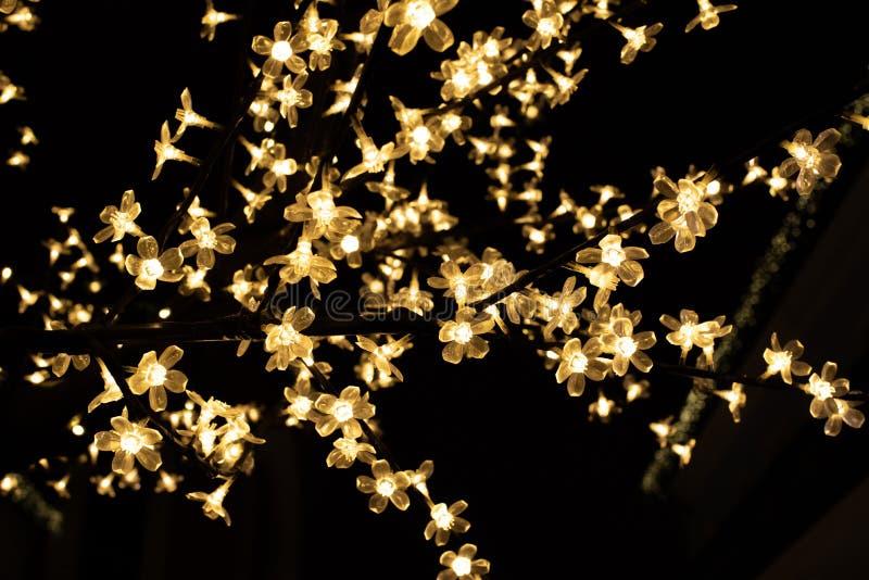 在黑背景的金黄圣诞灯 库存图片