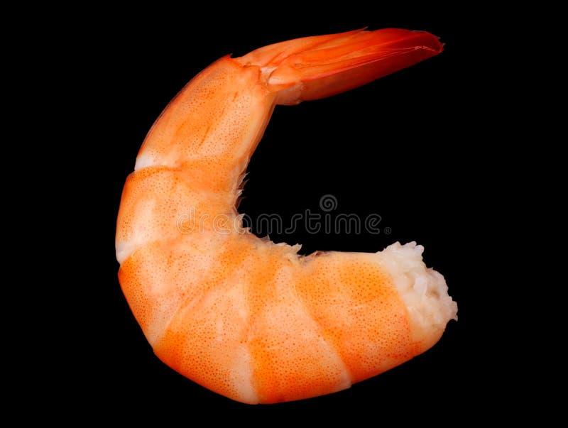 在黑背景隔绝的一只虾 顶视图 库存照片