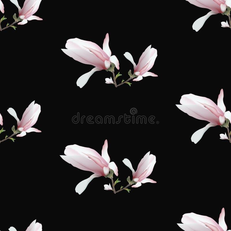 在黑背景隔绝的现实木兰花 木兰分支是春天,夏天,女性魅力,阴物的标志 向量例证