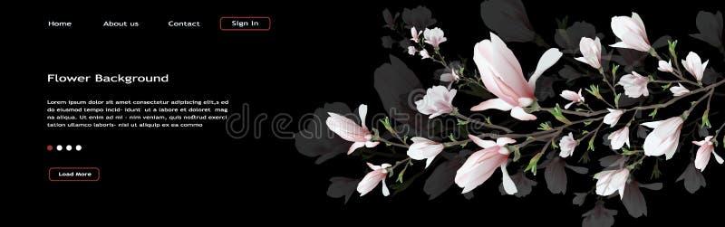 在黑背景隔绝的现实木兰花 木兰分支是春天,夏天,阴物的标志仿照样式 库存例证
