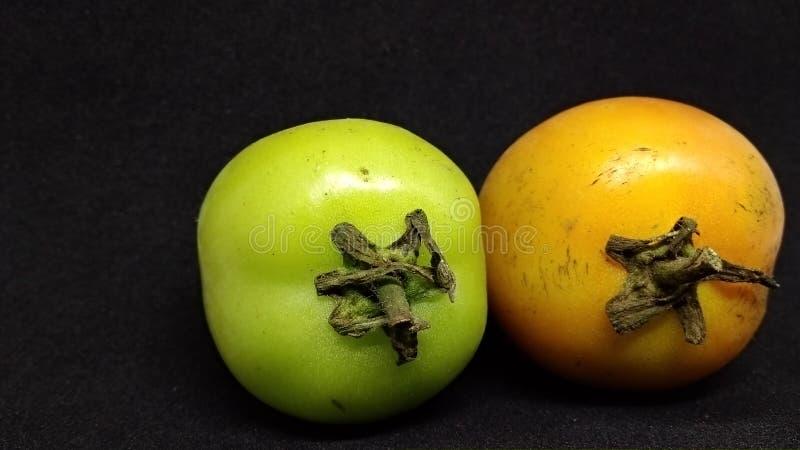 在黑背景隔绝的蕃茄 库存图片