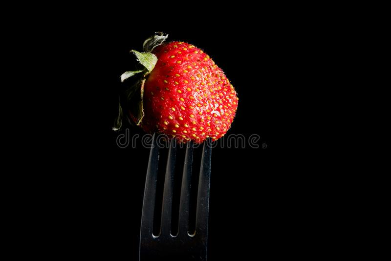 在黑背景隔绝的银色叉子的新鲜的草莓 r 免版税库存图片