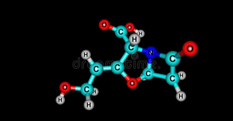 在黑色隔绝的Clavulanic酸分子结构 皇族释放例证