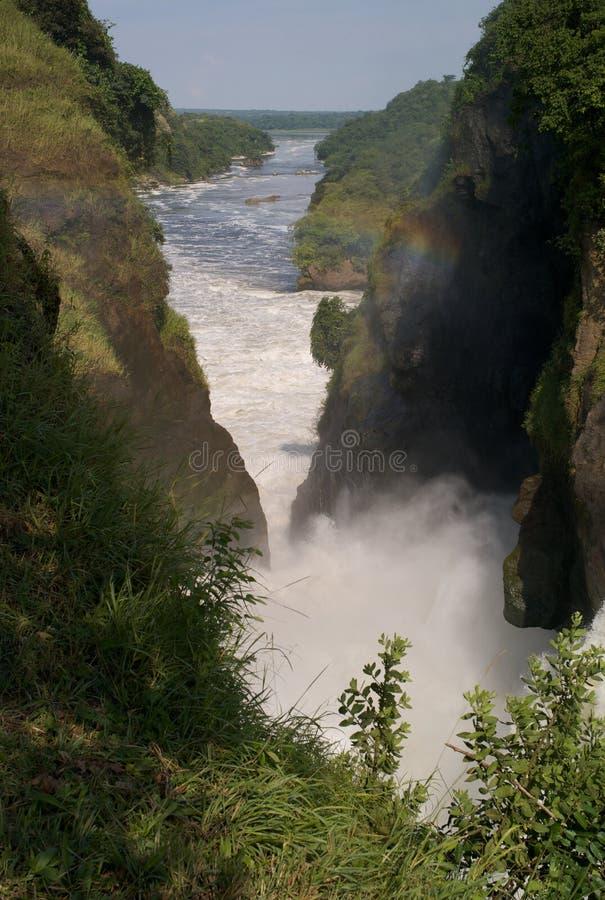 在默奇森Falls,尼罗省,乌干达的壮观的瀑布 库存照片