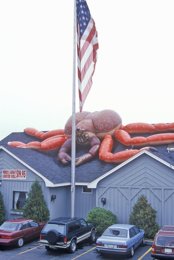在龙虾餐馆,龙虾,我前面的美国国旗 免版税库存照片