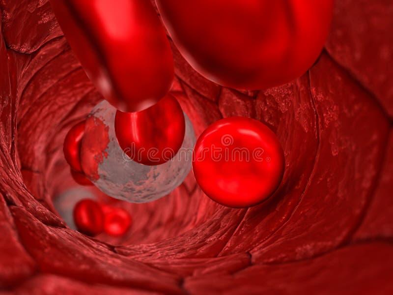 在-一支血管的内部看法的里面血管有通过与浅景深的红细胞和白细胞的 皇族释放例证