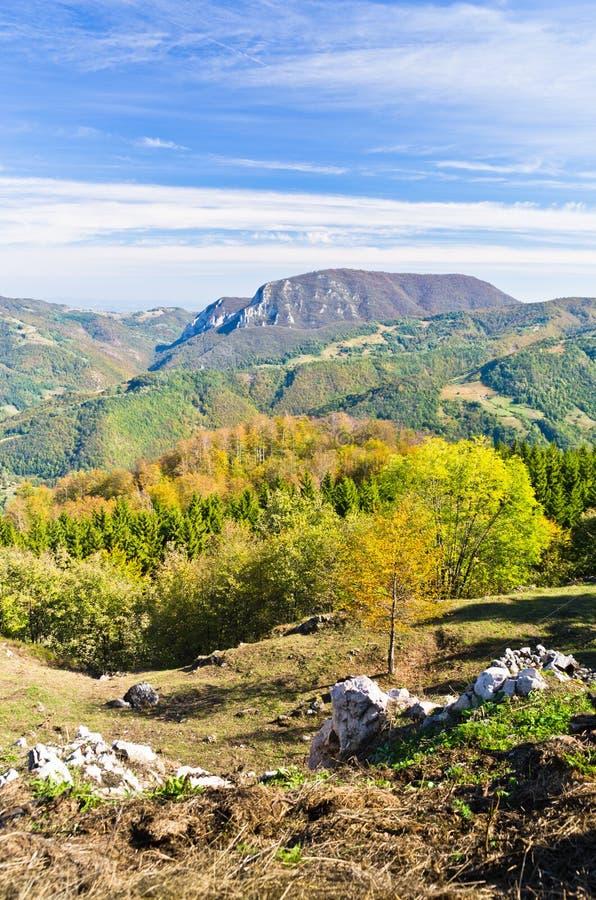 在登上Bobija,峰顶、小山、岩石、草甸和五颜六色的森林风景的观点  图库摄影