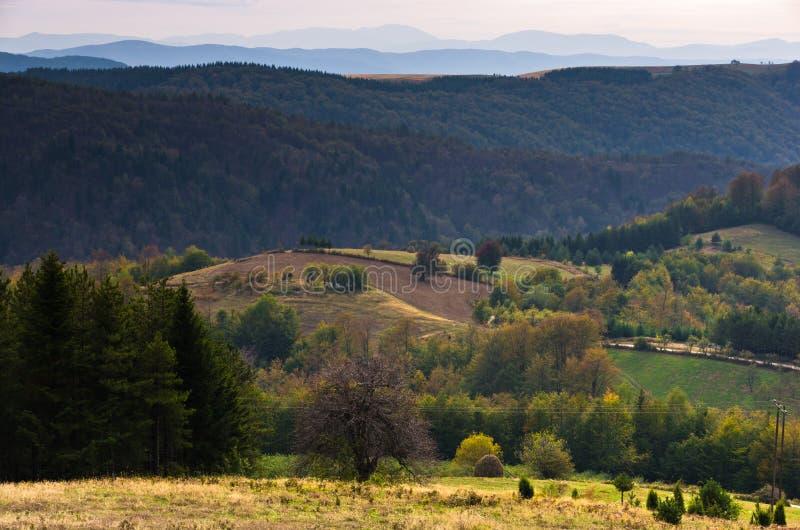 在登上Bobija,峰顶、小山、草甸和五颜六色的森林风景的观点  免版税库存图片