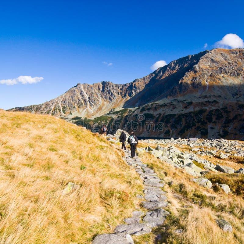 在5个湖谷的夏天在高Tatra山 免版税图库摄影