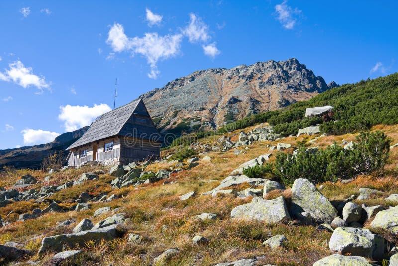 在5个湖谷的夏天在高Tatra山 库存照片