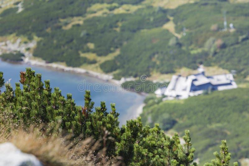 在5个湖谷的夏天在高Tatra山 图库摄影