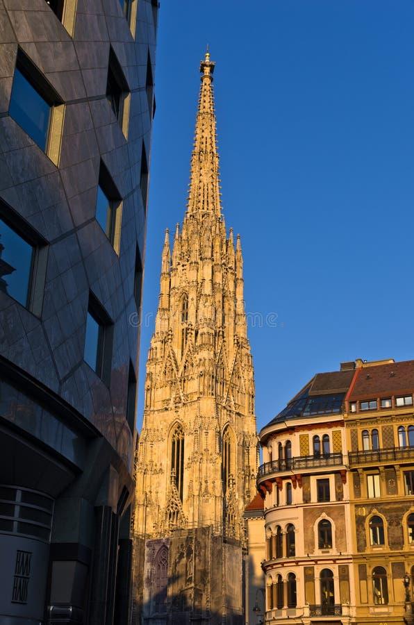 在维也纳, Haas议院和圣徒斯蒂芬的大教堂细节街市的日落在背景中 免版税库存图片