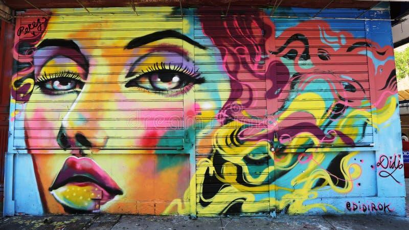 在更低的东边的墙壁上的艺术在曼哈顿 免版税图库摄影