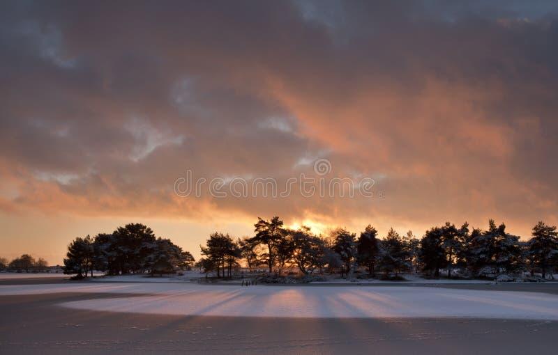 在柴刀池塘,新的森林,英国的日落 免版税库存照片