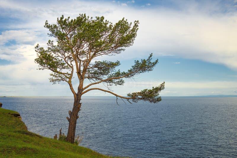 在贝加尔湖的风景 图库摄影