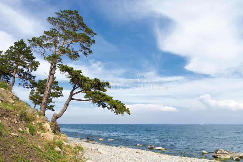 在贝加尔湖的风景 免版税库存照片