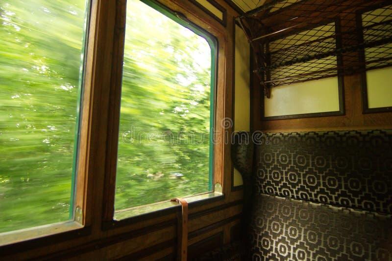 在移动在一个绿色森林里面的蒸汽火车里面 免版税库存照片