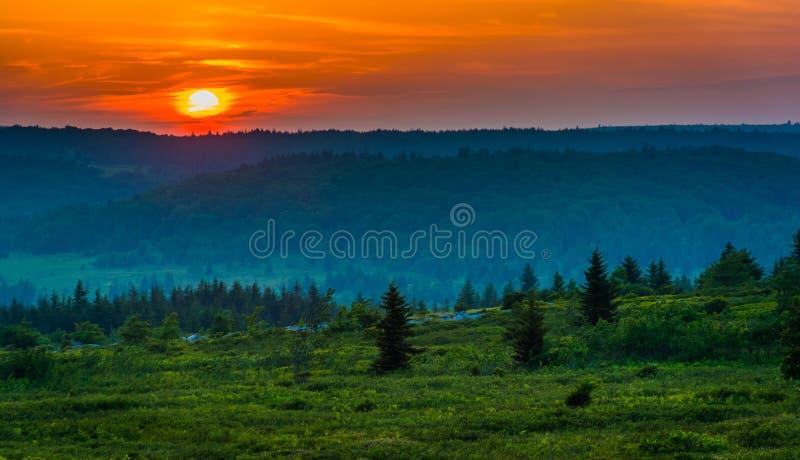 在移动式摄影车的日落铺草皮原野, Monongahela国家森林, 免版税图库摄影