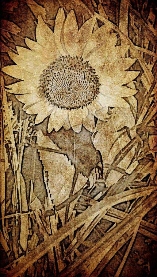 在织地不很细老纸背景的向日葵 库存例证