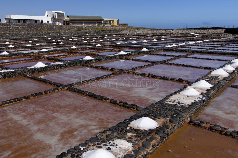 在费埃特文图拉岛的盐沼 免版税库存照片