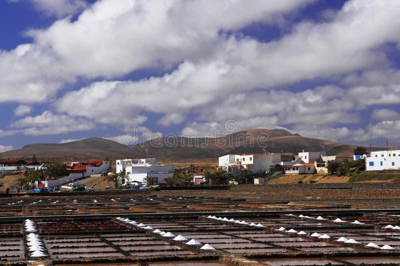 在费埃特文图拉岛的盐沼 免版税库存图片