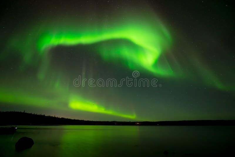 在满天星斗的天空的北极光 免版税库存照片