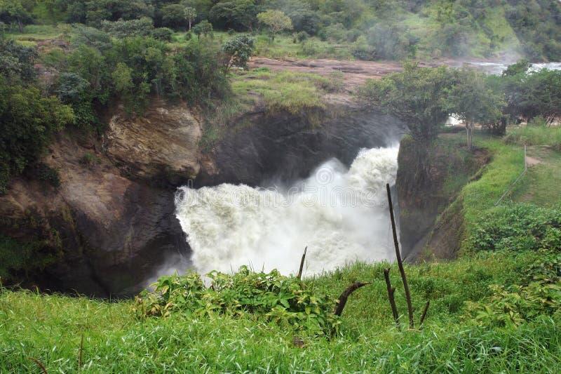 在默奇森Falls上在乌干达 库存图片