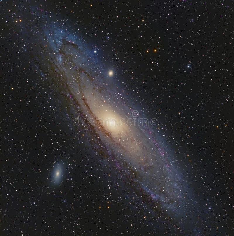 在仙女座的仙女座星系 库存照片