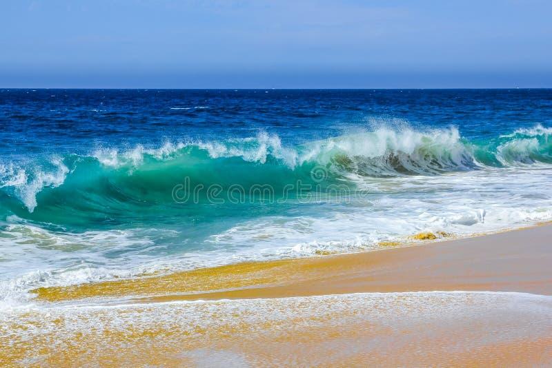 在离婚海滩的海浪  库存照片