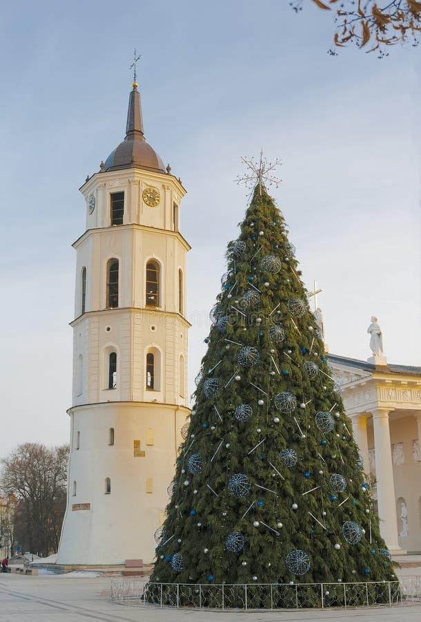 在维尔纽斯大教堂的圣诞树  库存图片