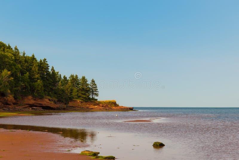 在贝尔蒙特省公园的海滩 库存图片