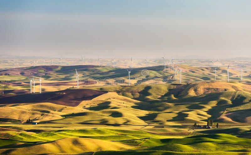 在绵延山的风车在Palouse 库存图片