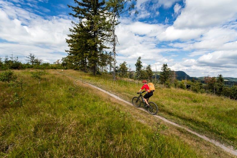 在登山车骑马的车手在森林和山 库存照片