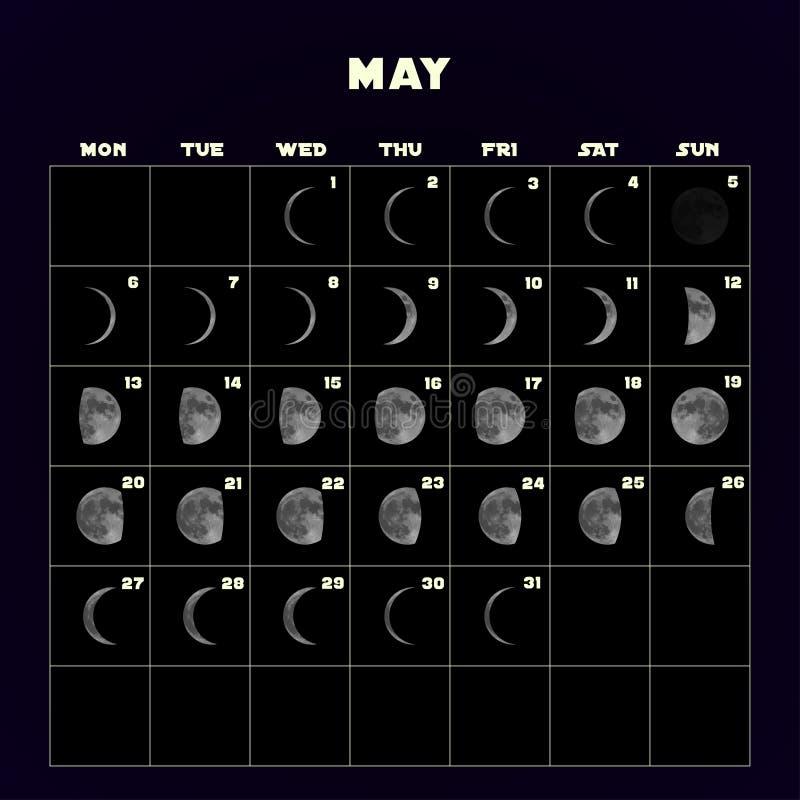 在2019年虚度阶段日历与现实月亮 可以 向量 向量例证