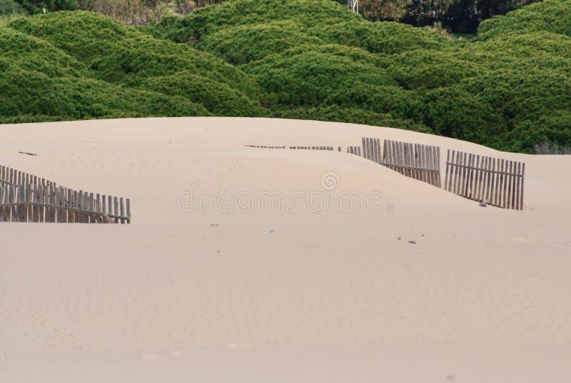 在离开的海滩沙丘的木篱芭在塔里法角,西班牙 免版税库存照片
