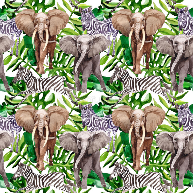 在水彩样式的异乎寻常的斑马和大象野生动物样式 向量例证