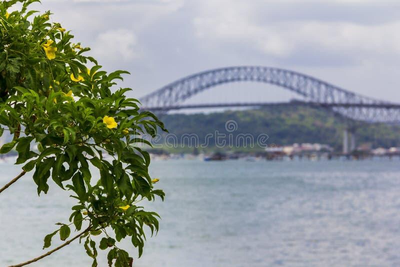 在巴拿马运河上的桥梁 图库摄影