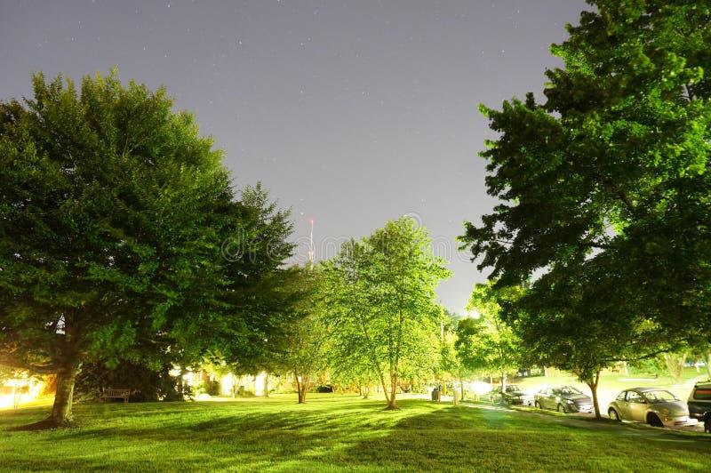在黎明前的满天星斗的夏夜 库存照片