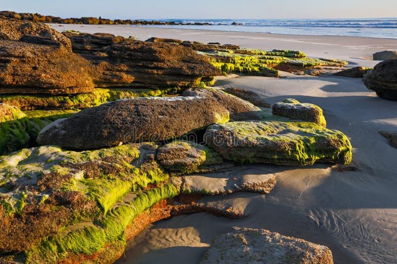 在破晓的海滩岩石 图库摄影