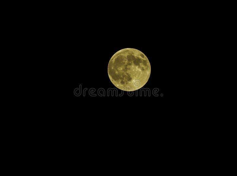 在黑暗的夜空的黄色满月 图库摄影