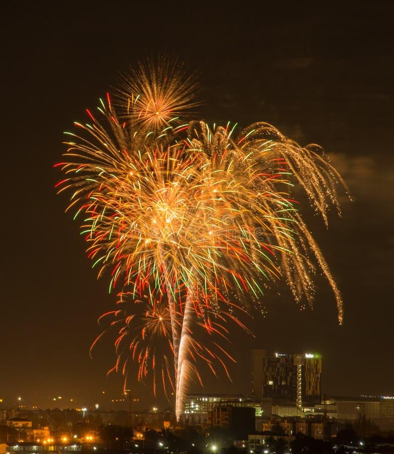 在黑暗的天空的五颜六色的烟花爆炸 免版税库存图片