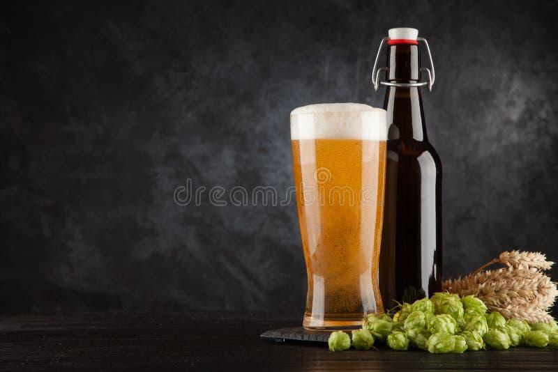 在黑暗的背景的啤酒杯 库存图片