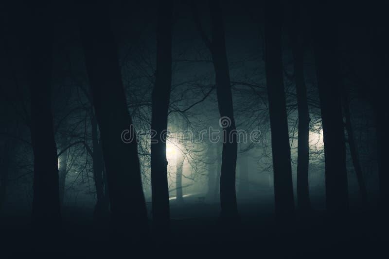 在黑暗的鬼的公园 库存照片