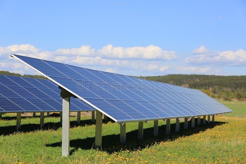 在晴朗的花田的太阳电池板 免版税库存图片