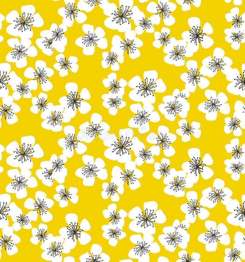 在晴朗的黄色背景的佐仓开花无缝的样式 库存例证