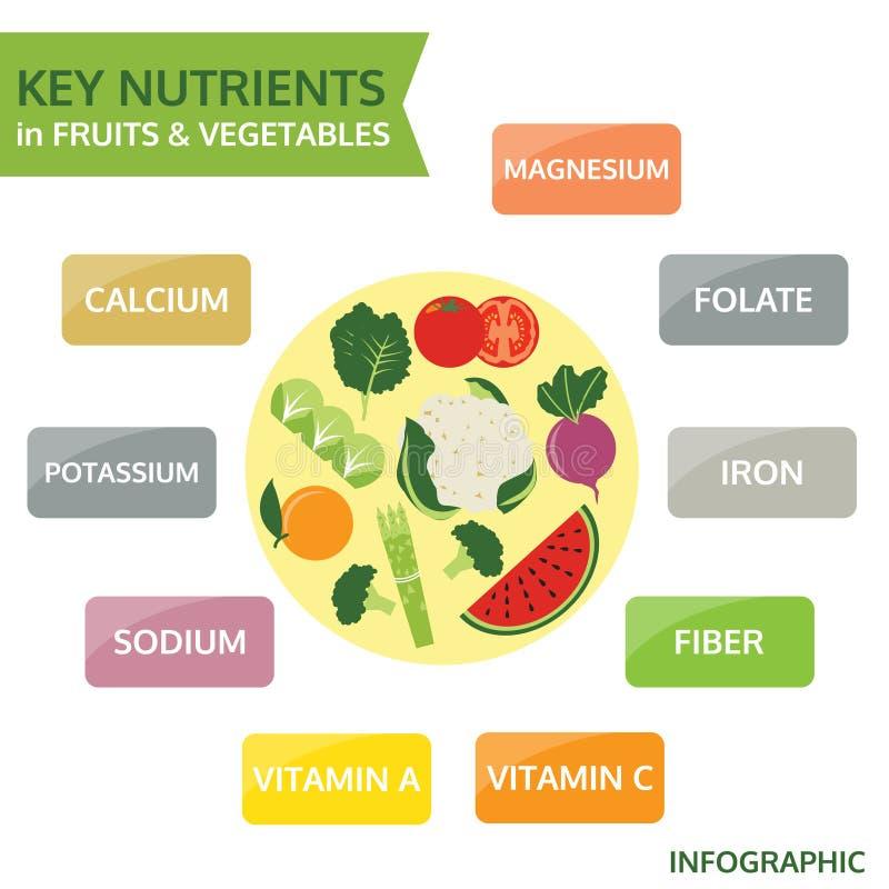 在水果和蔬菜,传染媒介的关键营养素 向量例证